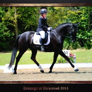 Sweet caledonia and Natasha Summer Open Championships Hickstead 2015